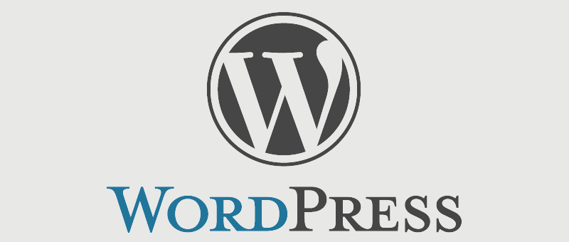 Why WordPress development can be a great option